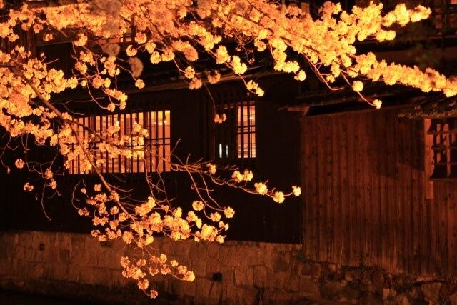 京都・祇園のキャバクラ・コンパニオン派遣を比較!稼ぎやすい会社を紹介